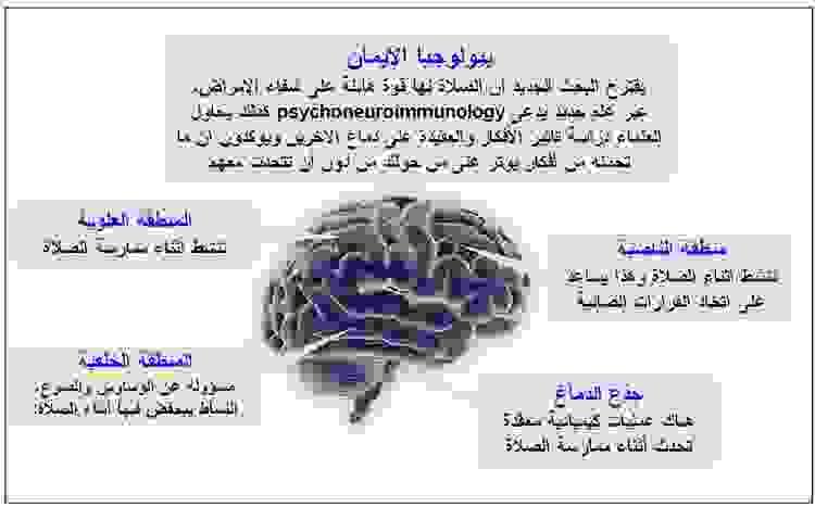 الصلاة تعيد برمجة الدماغ