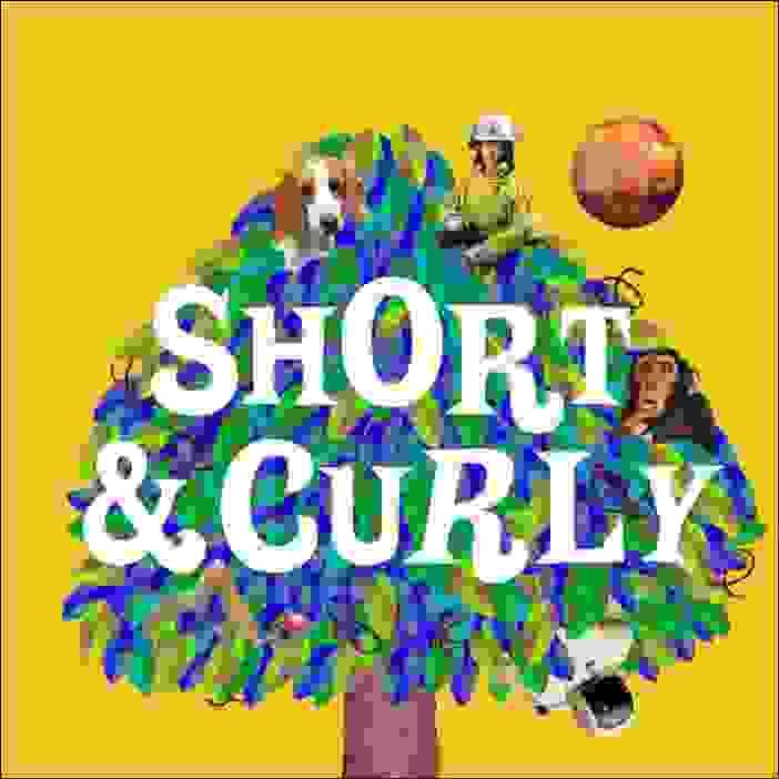 شورت آند كيرلي (Short & Curly)