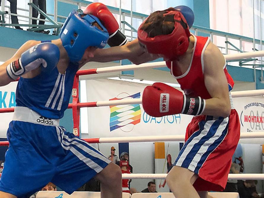 مهرجان الملاكمة الحرة في روسيا