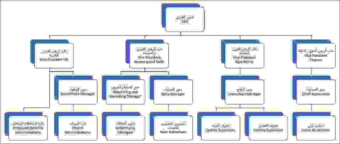 المخطط -1- مخطط التسلسل الهرمي للمنظمة